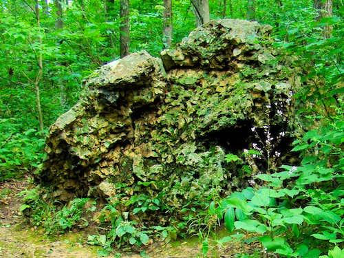 Blue Mound Fossil Boulder