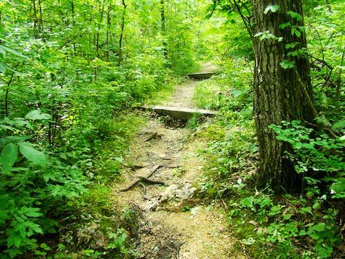 Blue Mound Trail Erosion Control
