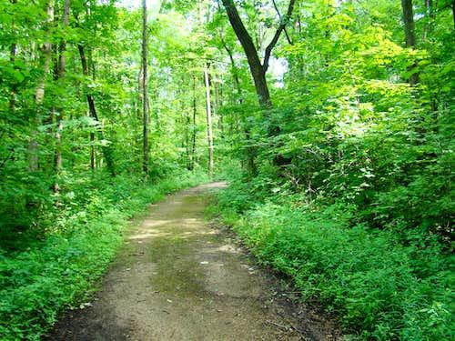 Blue Mound Flintrock Trail