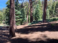 John's Meadow Campground