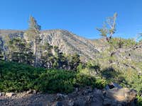 View of San Bernardino East Peak From Forsee Creek Trail
