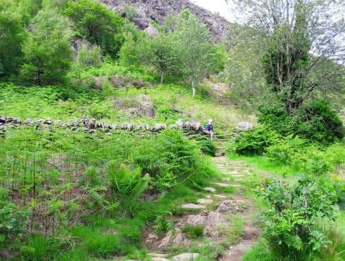 26. The trail emerges into grazing areas