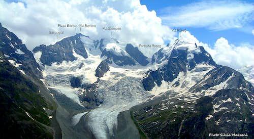 Bernina - Scerscen - Roseg annotated pano