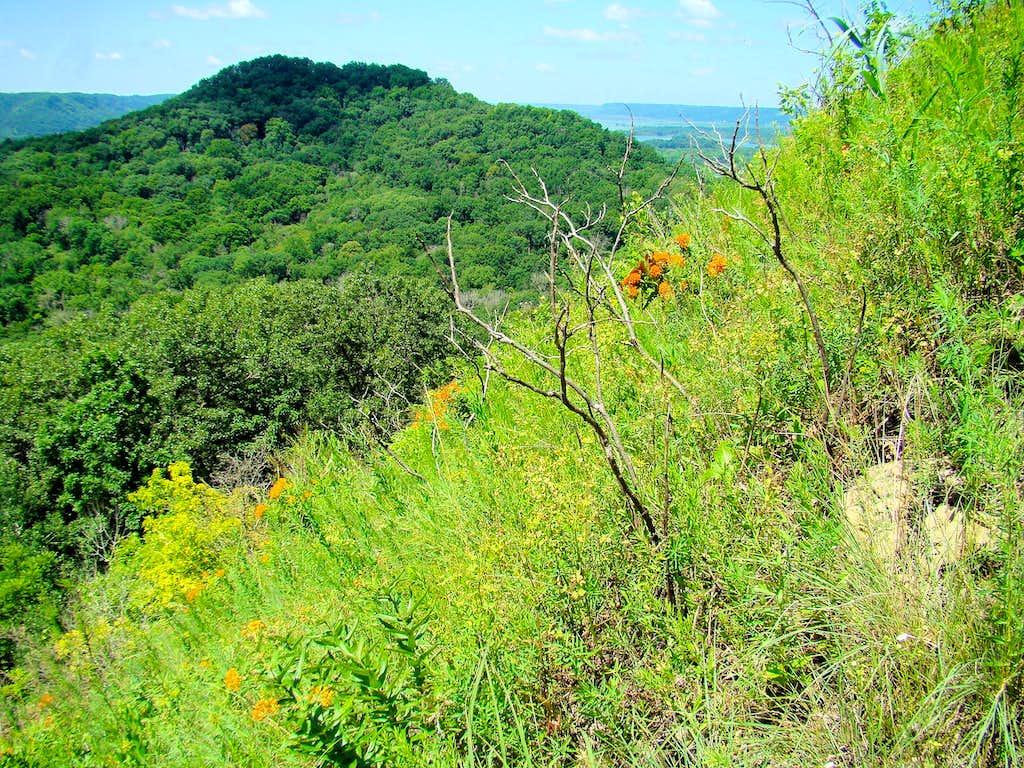 Perrot Ridge View of Brady's Bluff