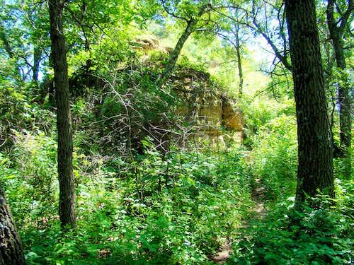 A Little Scrambling Through the Brush and Rock