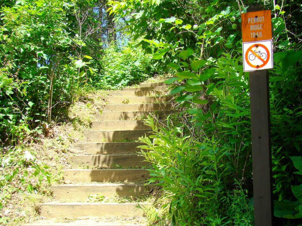 Stairway on Perrot Ridge Trail