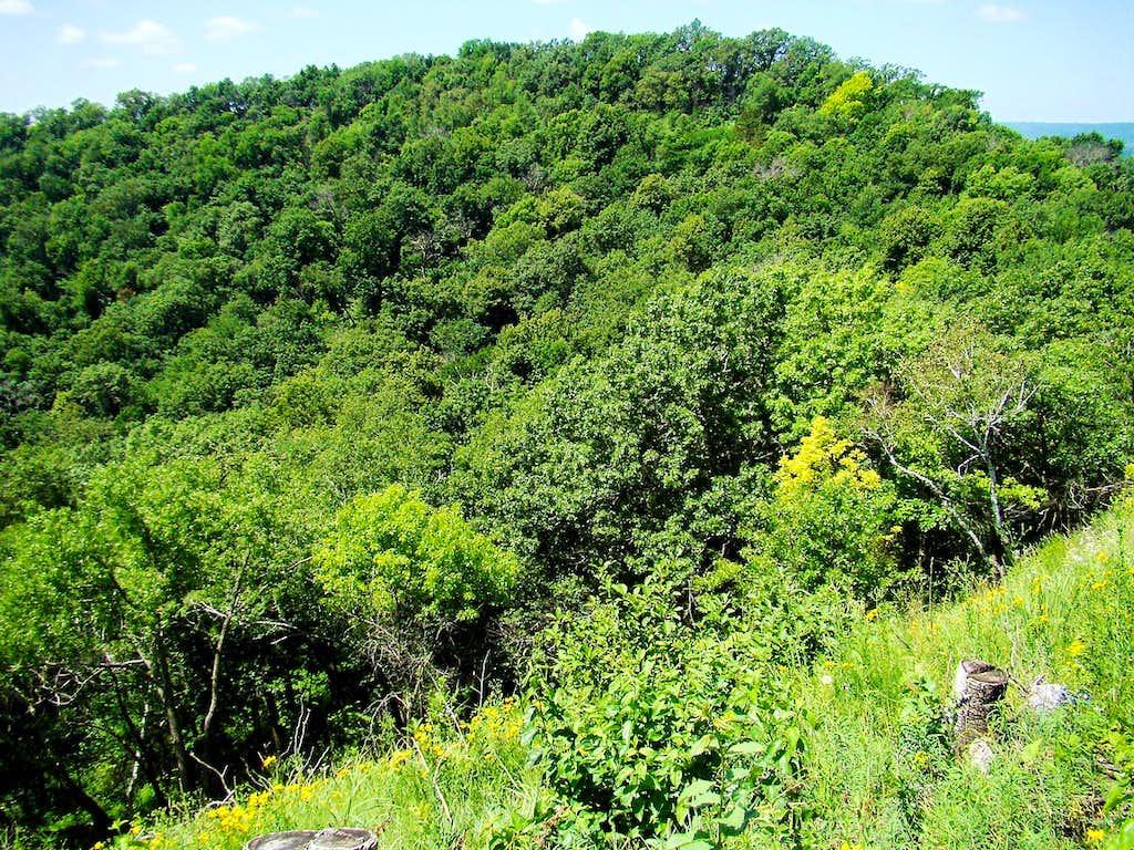 View of Perrot Ridge from Reed's Peak