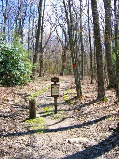 An Iron Mountain Trail marker...
