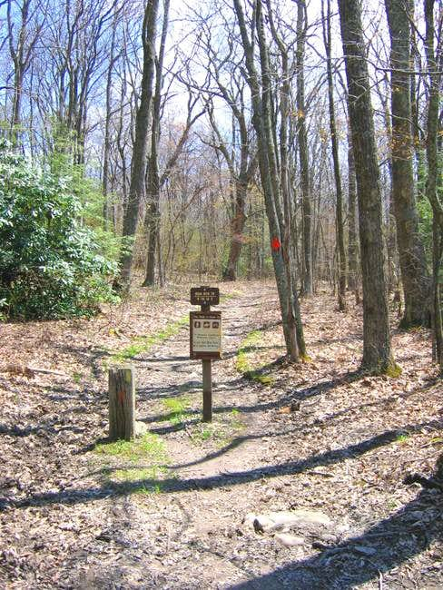 An Iron Mountain Trail marker...