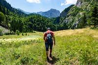 Hiker goes through out the valey of Suha Jezerina-NP Sutjeska
