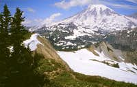 Mt. Rainier from Tatoosh Peak