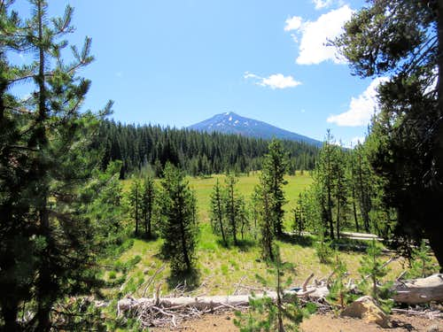 Mt. Bachelor from Todd Lake Trailhead