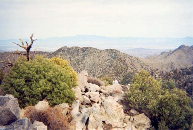 The summit of Kingston Peak.