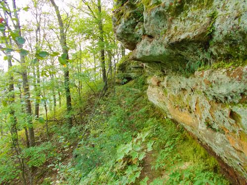 Small Rock Wall Along Steep Trail Section