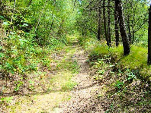 Saddle Mound Trail