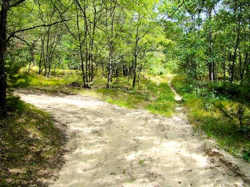 Saddle Mound Trail Fork