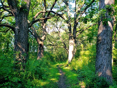 Ice Age Trail, Kettle Moraine South