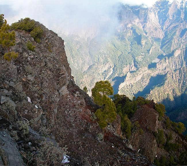 Summit view Pico Bejenado:...