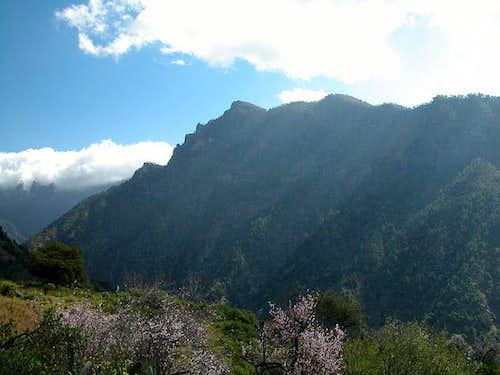 Pico Bejenado seen across...