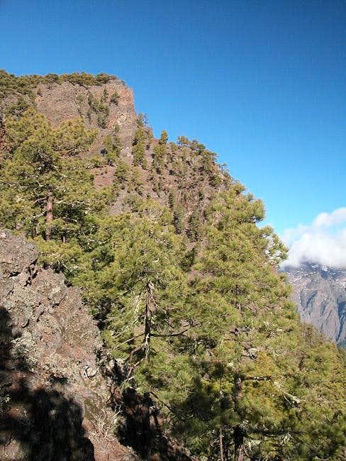 The Pico Bejenado summit as...