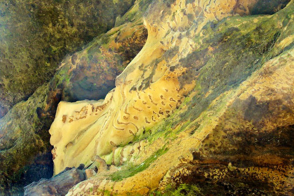 Wildcat Mound Sandstone Natural Patterns