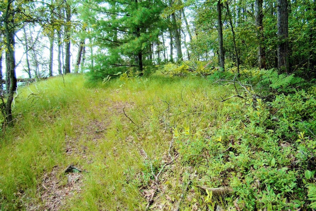Wildcat Mound Highpoint