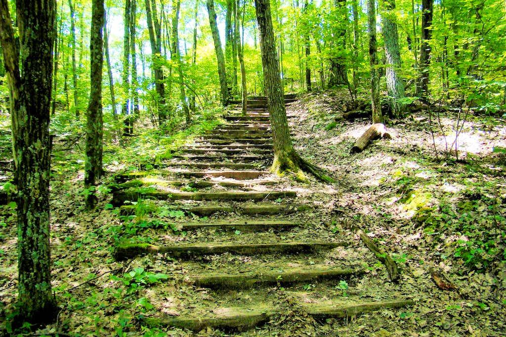Wildcat Trailhead Stairway