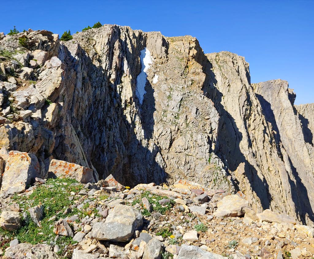 Summit of Hardscrabble Peak from Top of P4