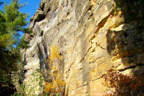 Trailside Cliff