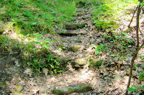 Rock Stairs at Far End of Trail Loop