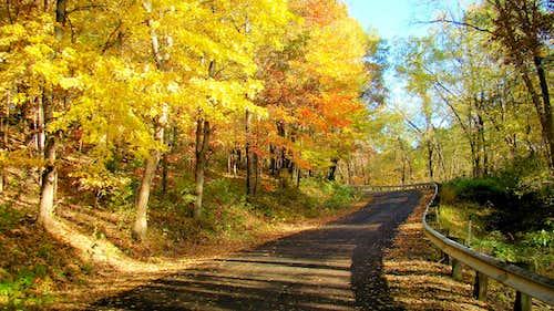 Elk Mound Road
