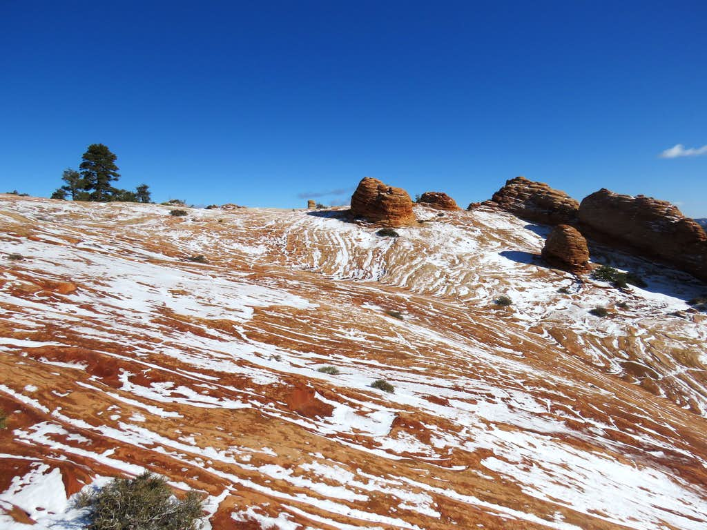 Slickrock slopes below Point 6982 ft