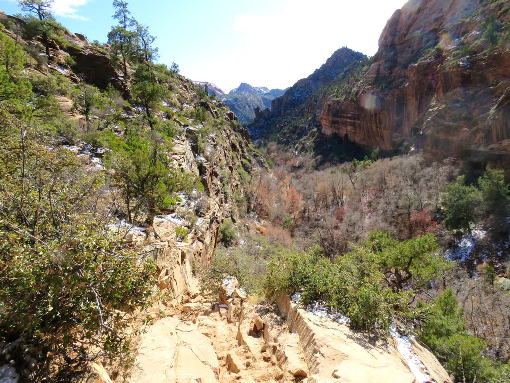Looking down Squirrel Canyon