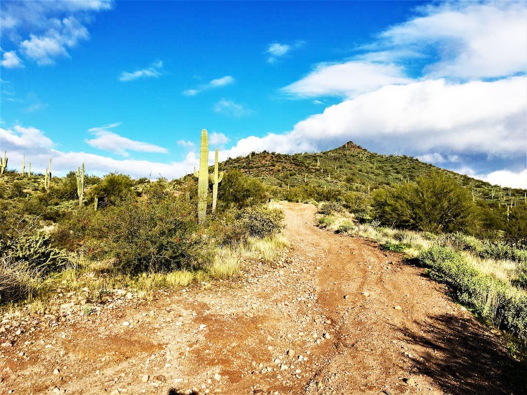 Nearing the base of Adams Mesa
