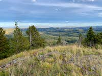 Low on the Bull Creek Hills