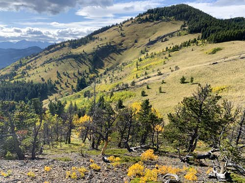 Lower southeast ridge of the Bull Creek Hills