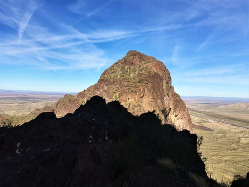 View of Razorback Ridge from the saddle