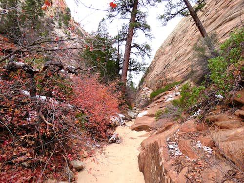 Checkerboard Canyon