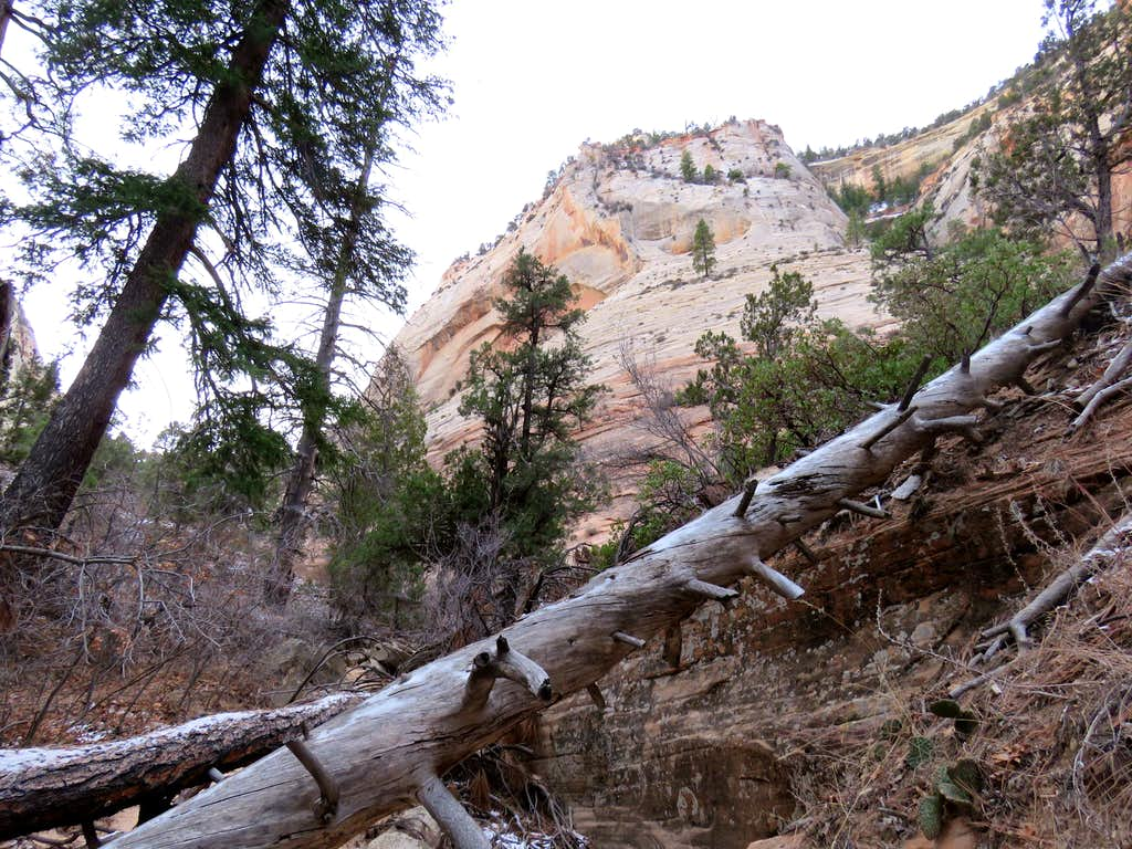 Upper parts of the canyon