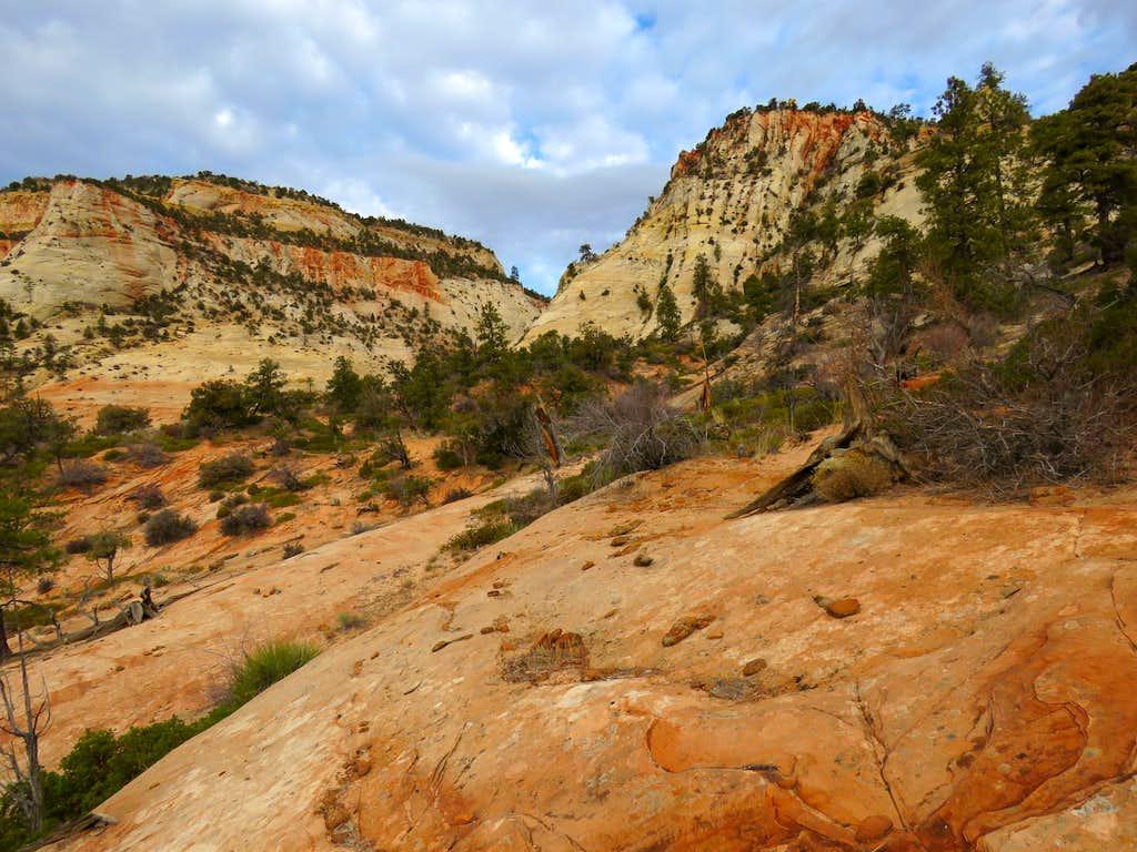 Looking back at canyon opening
