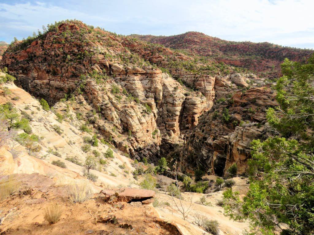 Parunuweap Canyon