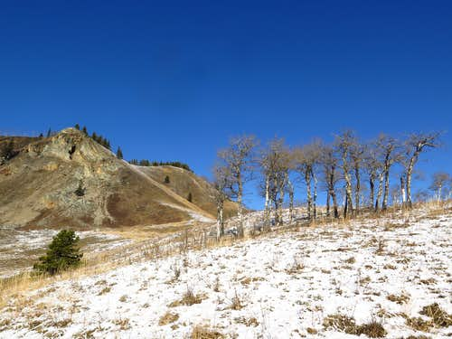 Descending Windy Point Ridge