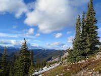 Treeline on the west ridge of Prairie Mountain