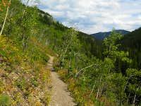 Sunny aspen traverse in Prairie Creek