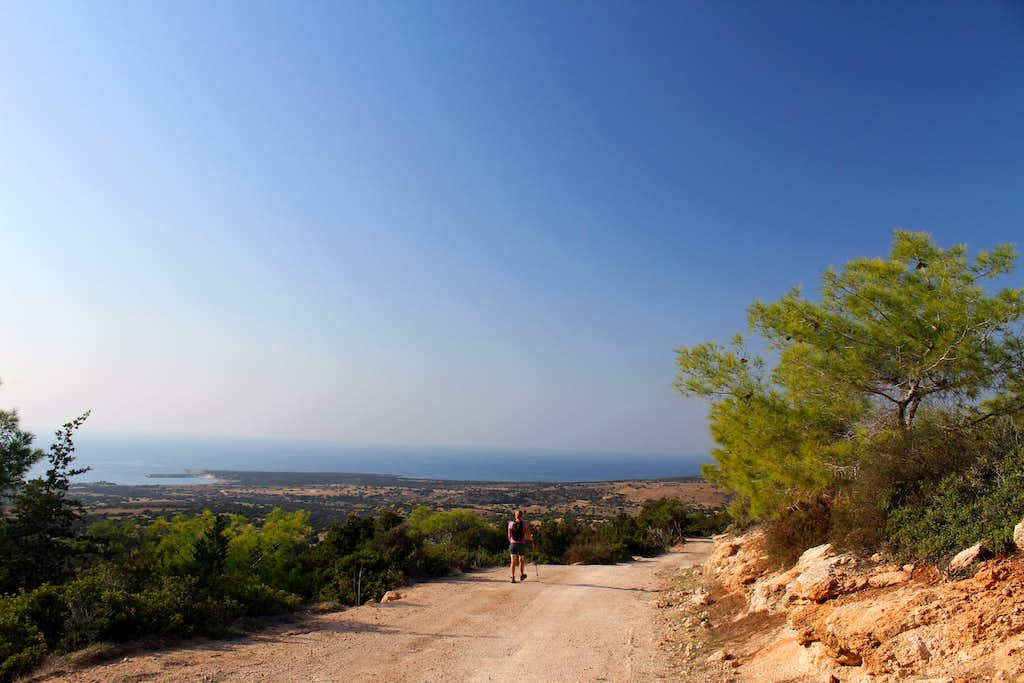 Blue Mediterranean views. Pegeia Forest