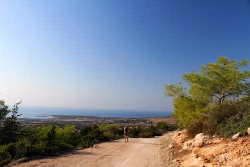Blue Mediterranean views. Pegeia Forest