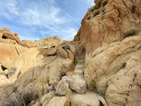 Stairs to Mastodon Peak