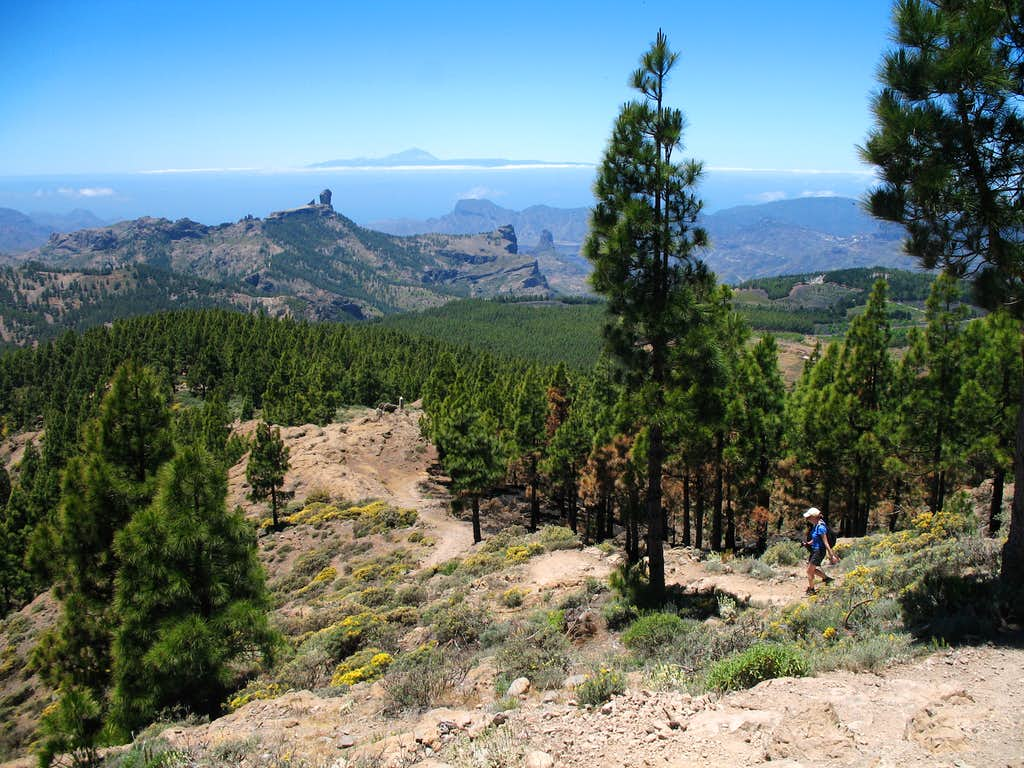 View of Roque Nublo and Mt Teide