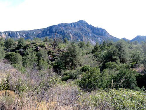 Emory Peak & South Rim