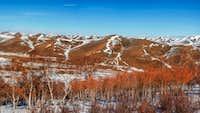 Rolling hills of Mongolia